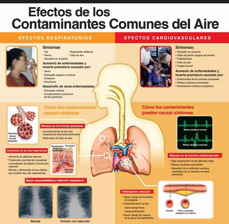 Salud Ambiental - Efectos