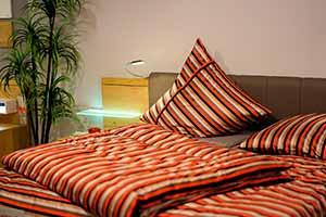 Desinsectación de chinches de cama